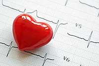Cholesterin Herz Erkrankung